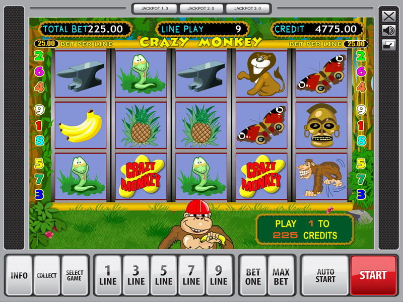 Crazy Monkey – the best Video Slot with 5 reels